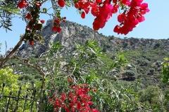 accommodation-crete0001